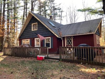Chestertown Single Family Home For Sale: 63 Elks Glade Road