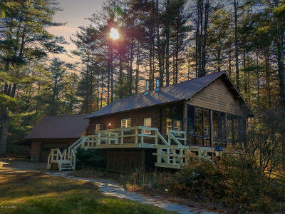 Chestertown Single Family Home For Sale: 19 Schroon River Forest