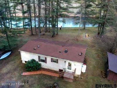 Chestertown Single Family Home For Sale: 43 Schroon River