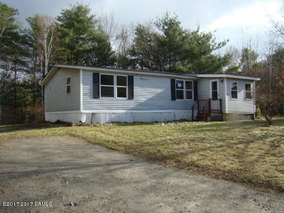 Ticonderoga Single Family Home For Sale: 160 Vineyard