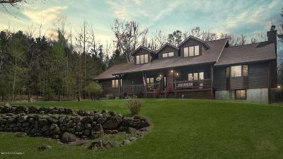 Johnsburg Single Family Home For Sale: 293 River Road