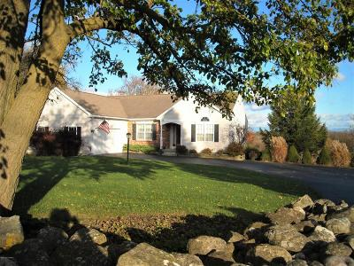 Queensbury Single Family Home For Sale: 176 Chestnut Ridge Road