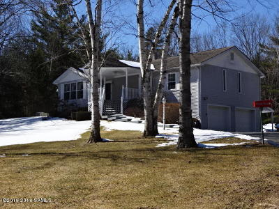 Schroon Single Family Home For Sale: 100 Pine Lane
