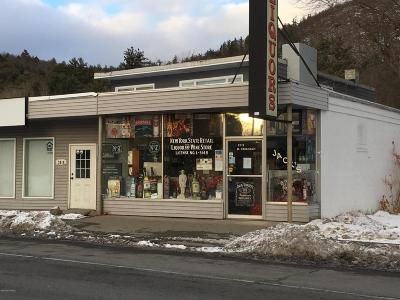 Warrensburg NY Commercial For Sale: $89,900