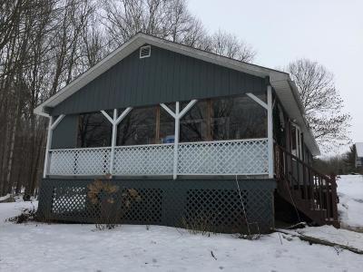 Lake Luzerne NY Single Family Home For Sale: $90,000