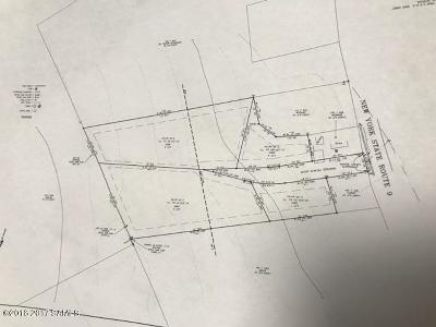 Residential Lots & Land For Sale: Rt 9 E Side