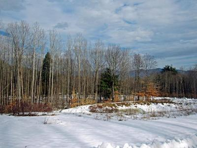 Lake George Residential Lots & Land For Sale: 130 Watershed Drive