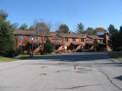 Johnsburg Single Family Home For Sale: 41o Freebern Road #Summit R