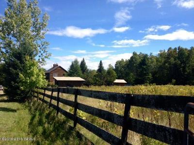Johnsburg Single Family Home For Sale: 296 Bird Pond Road
