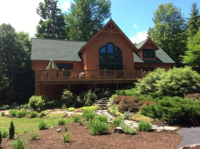 Lake George Single Family Home For Sale: 23 Spring Woods Rd