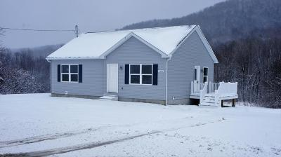 Argyle NY Single Family Home For Sale: $156,900