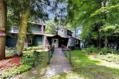Schroon Single Family Home For Sale: 35 Daniels Road