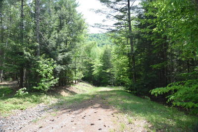 Bolton Residential Lots & Land For Sale: 413 County Route 11