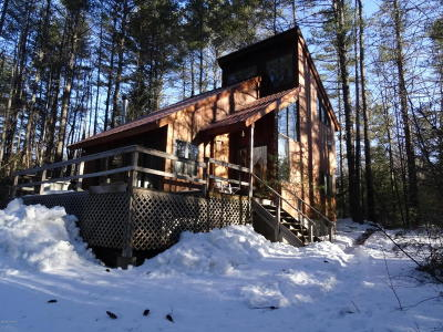Brant Lake Single Family Home Contingent Contract: 27 Delaney Drive