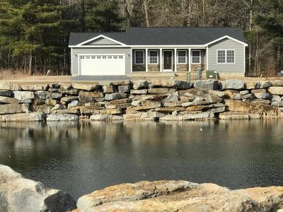 Hudson Falls Vlg Single Family Home For Sale: 24 Quarry Circle