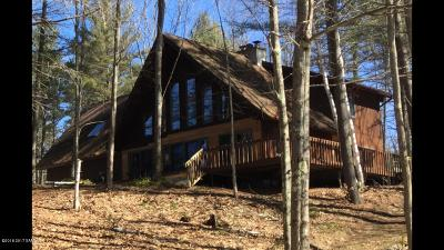 Warren County Single Family Home For Sale: 1035 State Route 28