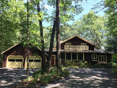 Lake George Single Family Home For Sale: 228 Konci Ter