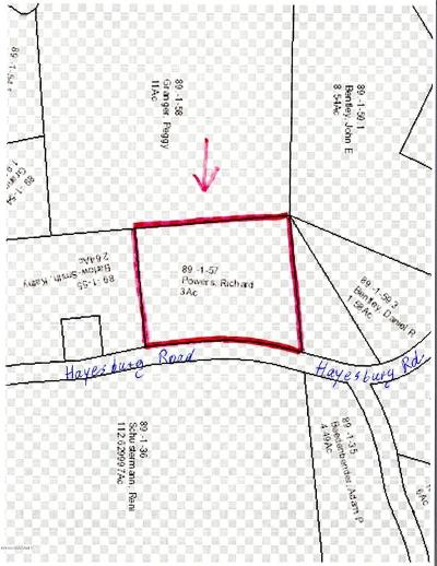 Brant Lake Residential Lots & Land For Sale: 837 Hayesburg Road