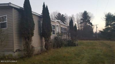 Salem Single Family Home For Sale: 126 County Route 49