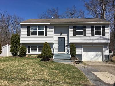 Hudson Falls Vlg Single Family Home For Sale: 29 Clark Street