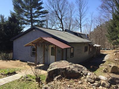 Lake Luzerne Single Family Home For Sale: 25 Smith Mountain Road