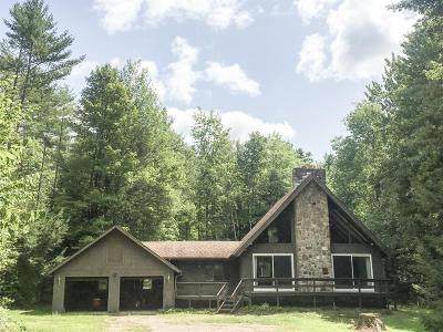 Chestertown Single Family Home For Sale: 110 Stage Coach Road