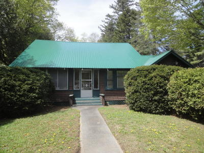 Schroon Single Family Home For Sale: 1215 Us Rt. 9