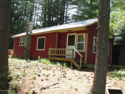 Saratoga County Single Family Home For Sale: 36 Riverview Drive