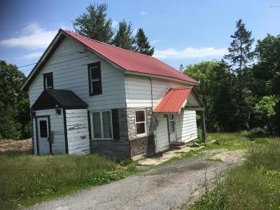 Ticonderoga Single Family Home For Sale: 53 Burgoyne Road