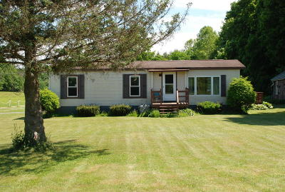 Salem Single Family Home For Sale: 3592 State Route 22