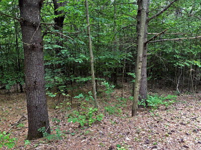 Residential Lots & Land For Sale: Lot 35 Lake View Hill Road