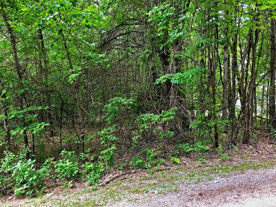 Residential Lots & Land For Sale: Lot 7 Lake View Hill Road