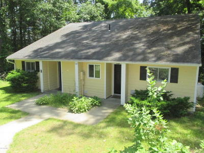 Lake George Multi Family Home For Sale: 382 Ny-149 #A & B
