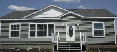 Warrensburg Single Family Home For Sale: 24 Fourth Avenue