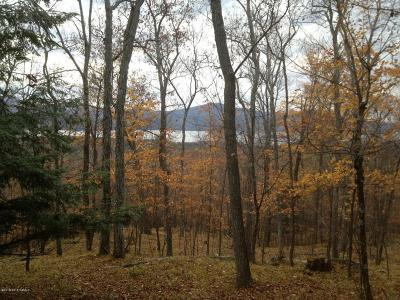 Residential Lots & Land For Sale: Valley Woods Road
