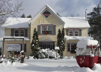 Johnsburg Single Family Home For Sale: 196 Main Street Street