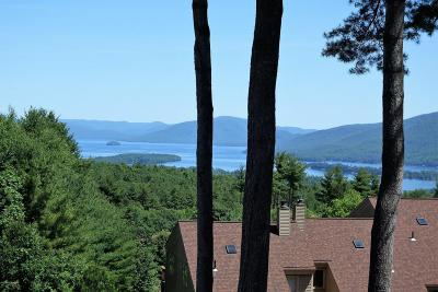 Lake George Single Family Home For Sale: 441 Lockhart Mountain Road #3