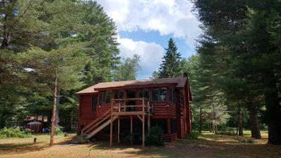 Chestertown Single Family Home For Sale: 27 Schroon River Forest