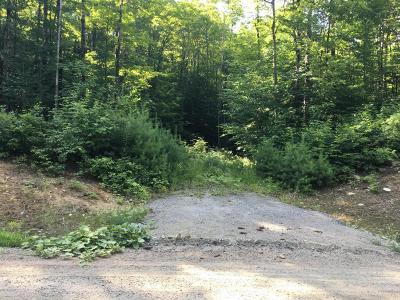 Brant Lake NY Residential Lots & Land For Sale: $35,900