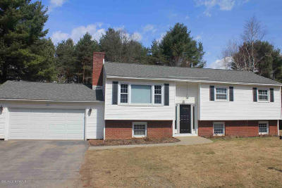 Queensbury Single Family Home For Sale: 12 Peggy Ann Road