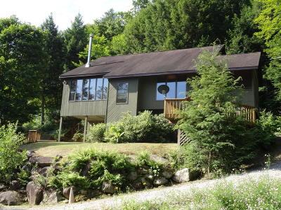Warrensburg Single Family Home For Sale: 449 E Kelm Pond Road