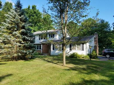 Queensbury Single Family Home For Sale: 13 Maplewood Drive