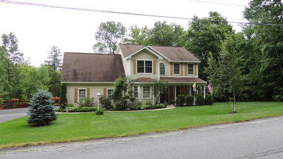 Lake George Single Family Home For Sale: 272 Middle Road