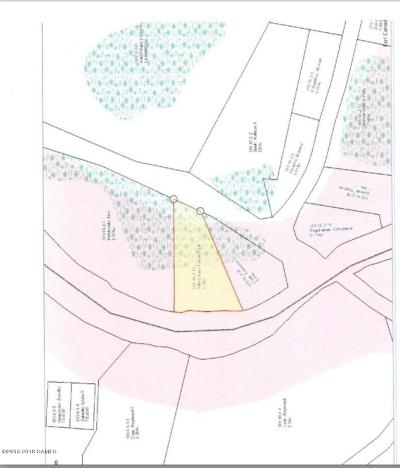 Brant Lake Residential Lots & Land For Sale: Horicon Avenue