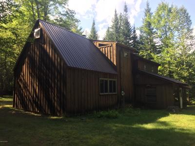 Horicon Single Family Home For Sale: 321 Shaw Hill Road