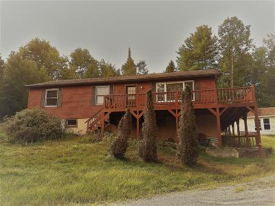 Lake George NY Single Family Home Contingent Contract: $179,900