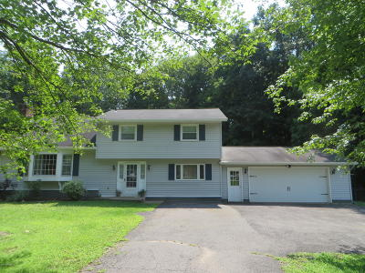 Clifton Park Single Family Home For Sale: 26 Guilder Place