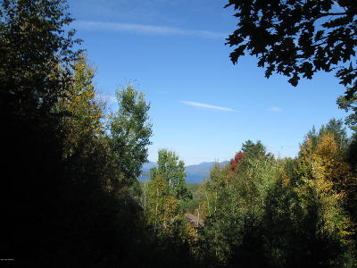 Lake George Residential Lots & Land For Sale: 69 Mohawk Mountain Road