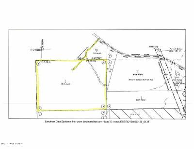 Ticonderoga Residential Lots & Land For Sale: 194 Alexandria Avenue