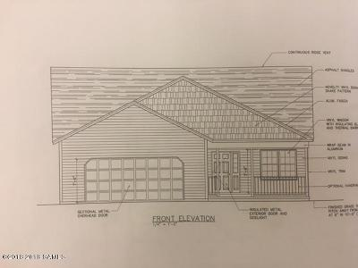 Hudson Falls Vlg Single Family Home For Sale: 11 North Street